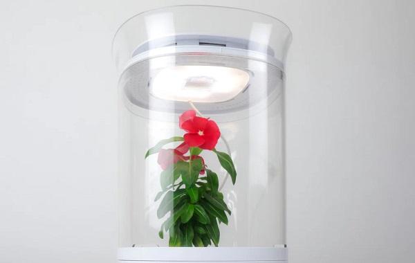 Systém Bloomengine pre automatické pestovanie citlivých rastlín.